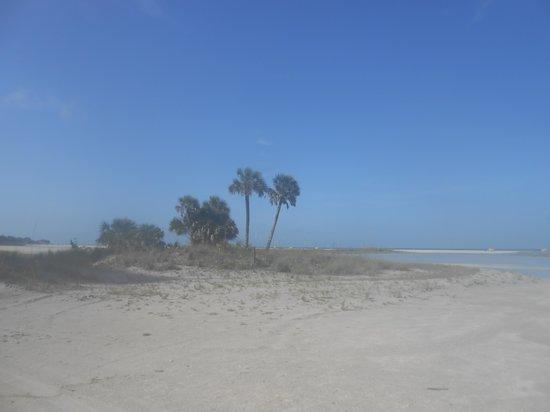 Surf Beach Resort: Beach