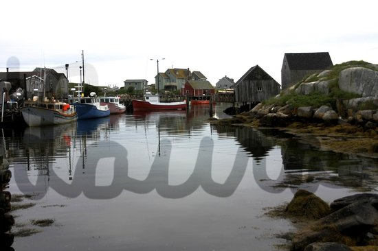 Clifty Cove Motel: Peggy's Cove village, just down the road