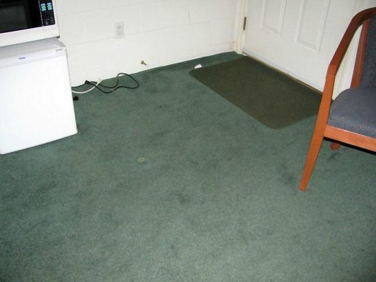 Prince Motel: Filthy stained carpet