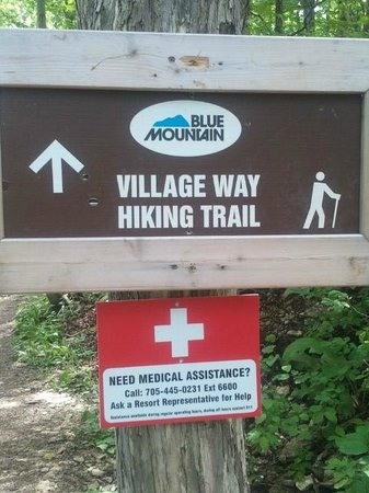 Mountain Springs Resort and Conference Centre: Hiking trails