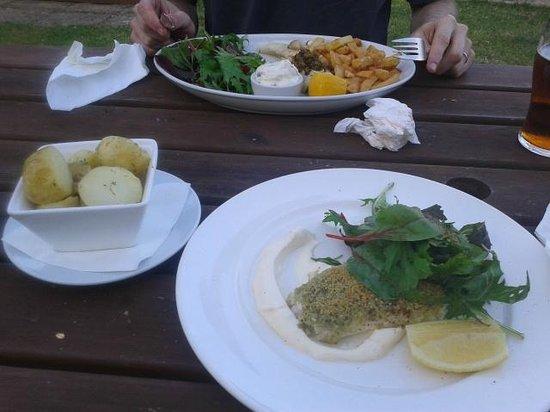 The Stackpole Inn Restaurant: Mains - hake & haddock