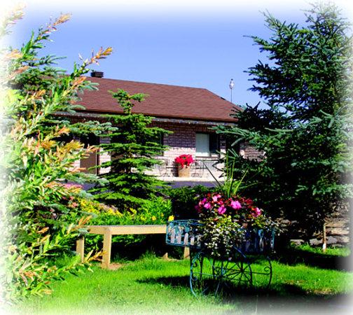 Motel Alexandrin: motel
