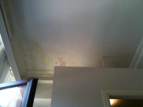 The Bridge Hotel: The mouldy corner above the bathroom cubicle