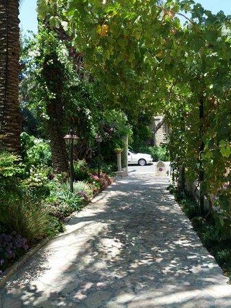The American Colony Hotel : Gardens