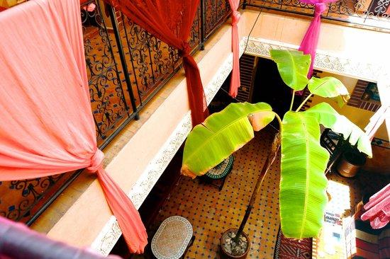 Riad Eva: open courtyard with Banana tree