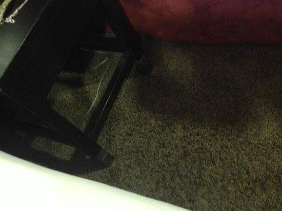 Hotel Suede: inside hotel room