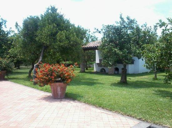 Agriturismo Galea: giardino
