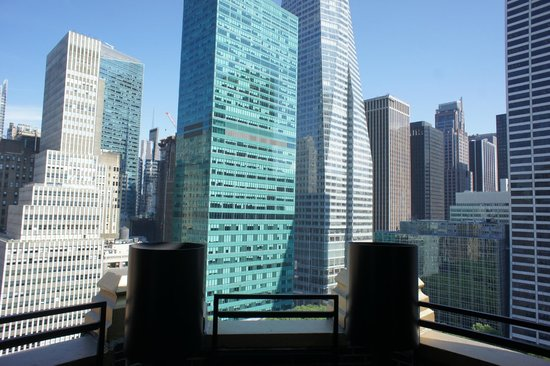 The Bryant Park Hotel: One last view from terrace.