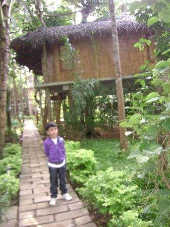 Pepper Green Village: my child before the tree house