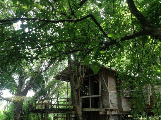 Mt. Pelier Cottages: Bedroom with en suite bathroom