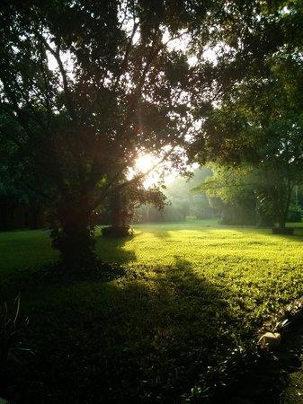 Hacienda Misne : sunrise