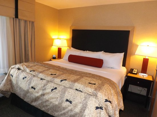 Cambria Hotel & Suites Rapid City: Very comfortable king size bed