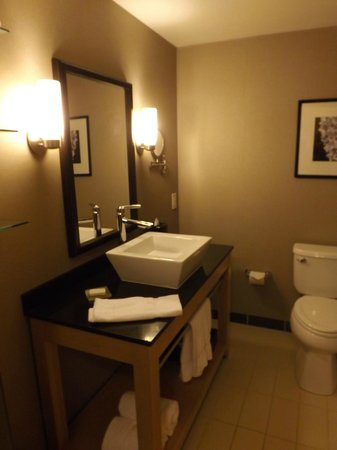 Cambria Hotel & Suites Rapid City: Bathroom sink and toilet