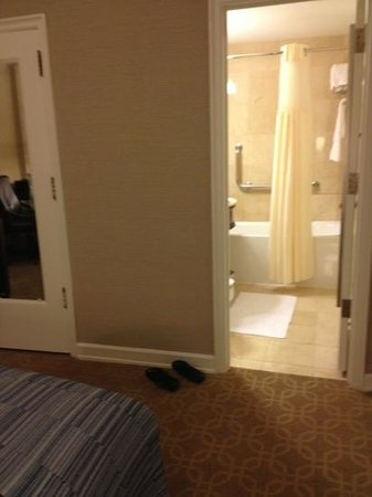 Hilton Milwaukee City Center: from bed to bathroom, but very clean