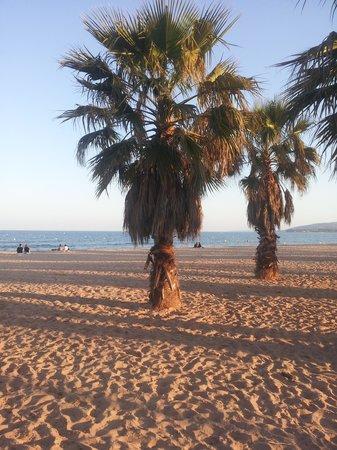 Hotel Le 126: la plage a pied en 8 min !!!!