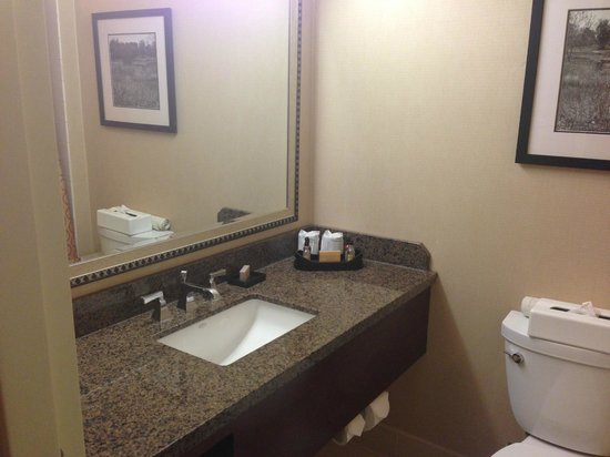 Torrance Marriott Redondo Beach: Bathroom