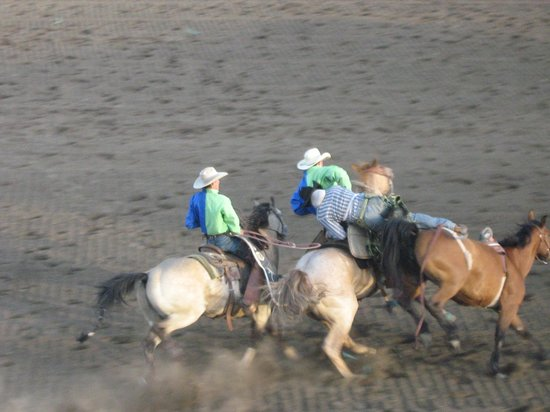 Salsbury Avenue Inn: Rodeo in town
