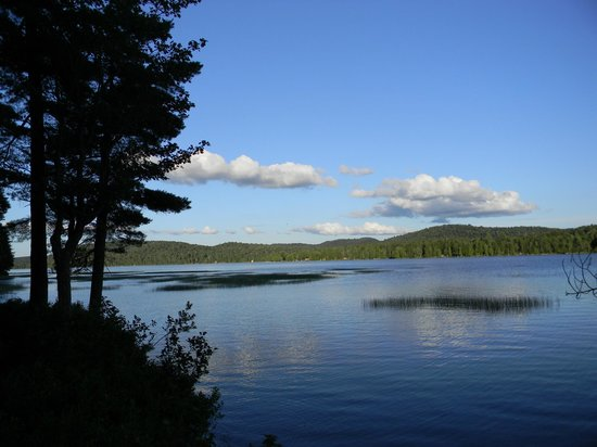 The Waldheim: View of Big Moose Lake from the Lean-To