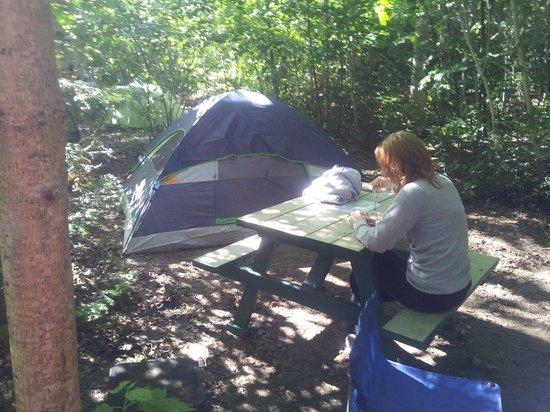 Chalets-Camping Domaine des Dunes : campsite 108