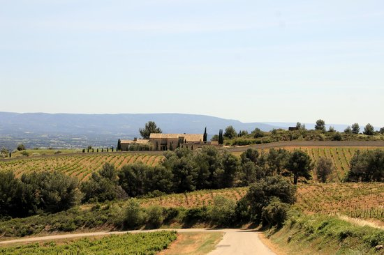 Domaine de Coyeux : View coming back from the winery
