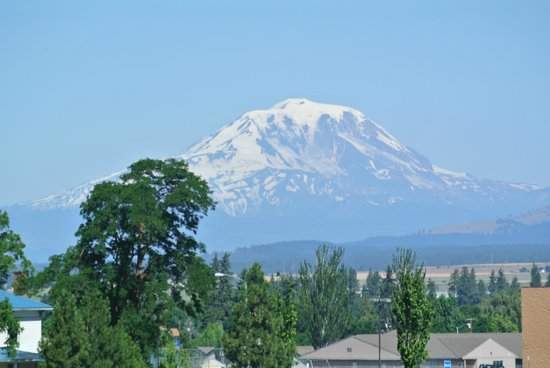Quality Inn & Suites Goldendale: From room (zoom lens)