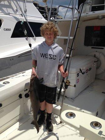 Long Time Com'n Charters & Sportfishing: Cobia 2013