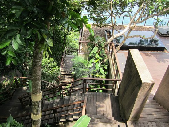 Paresa Resort Phuket : Path leading to infiniti pool