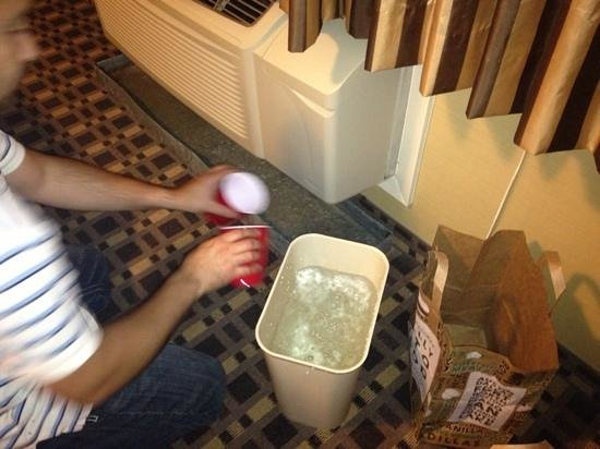 Ramada Del Rio : welcome to the ramada suite!  includes free air conditioner water.