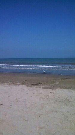 Kohsamui: praia em frente ao hotel
