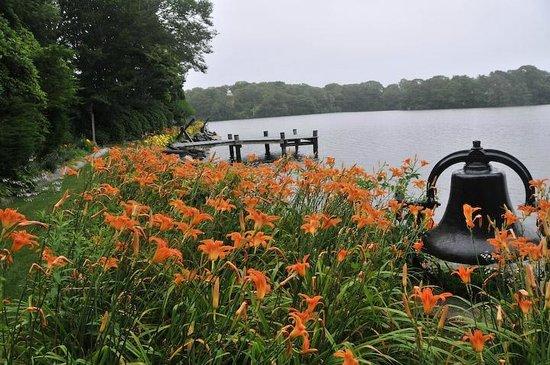 Spohr Gardens: Amazingly Beautiful Flowers