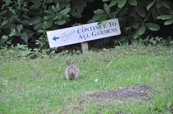 Spohr Gardens: Nature letting you know to come visit