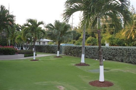 Christopher Columbus Condos: beautiful landscaping at CCC