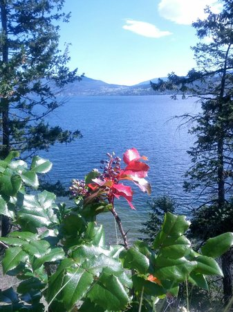 Lake Okanagan Resort - Hiking Trails
