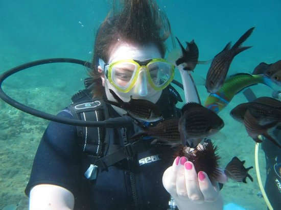 Fun dive divingcenter : Photo sous marine
