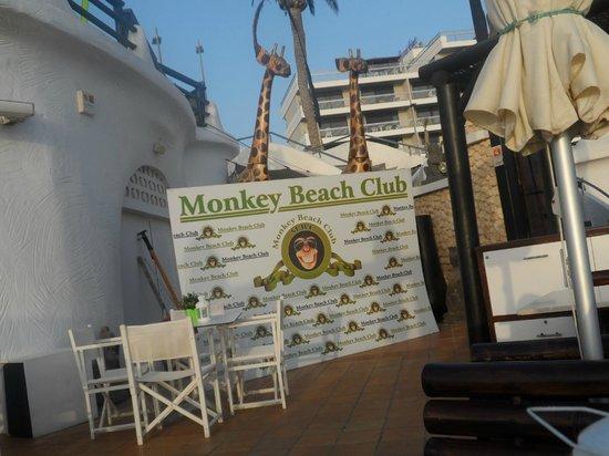 Coral California: Monkey Beach Club, restaurant right on the beach