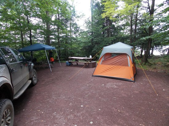 Ricketts Glen State Park Campground: Campsite