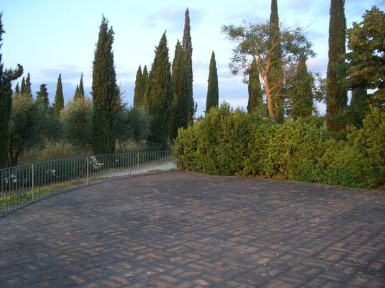 allegretti: A view of the garden