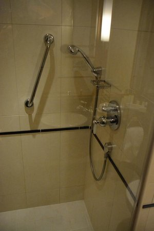 DoubleTree by Hilton Hotel Newcastle International Airport: Shower