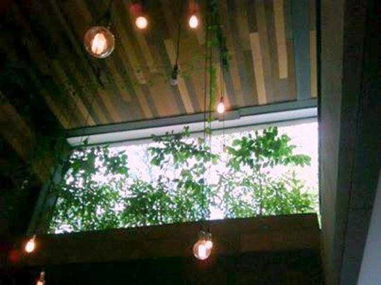 Le Manjue Organique: Salão interno com iluminação retrô...experimenta !