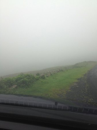 Gray's Guest House: Mist on the roads