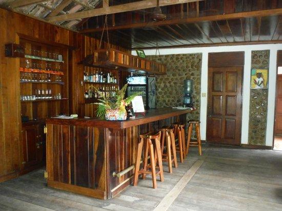 duPlooy's Jungle Lodge: The Bar