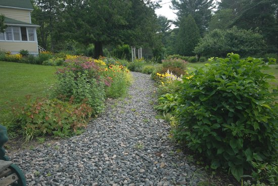 Juddhaven Guest House: Front walk way and more flowers