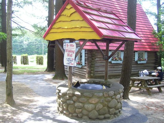 Magic Forest: Wishing Well