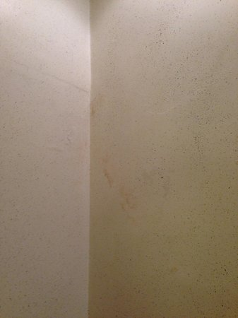 Hotel Aventino: Dirty walls in room