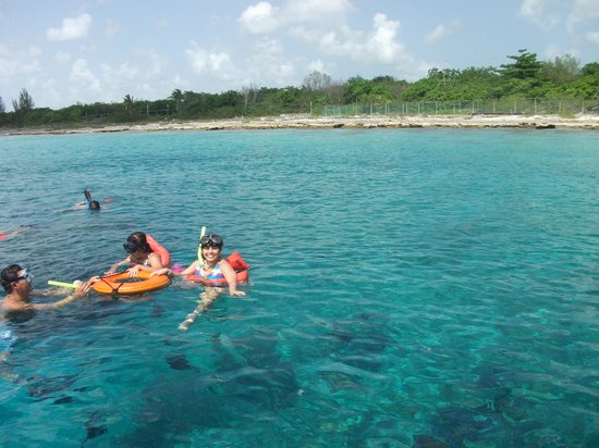 Personalized Snorkel Tours In Cozumel