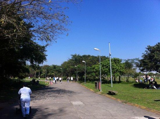 Villa Lobos Park: pista para caminhar
