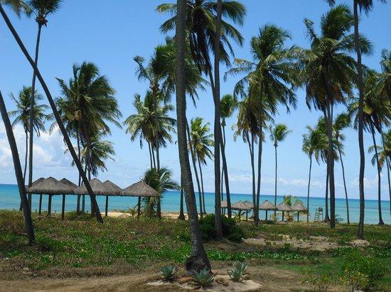Iberostar Praia do Forte: Vista da sacada de uma suite junior