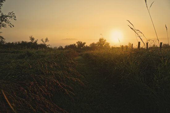 sunrise walk on the hillside picture of the inn at irish