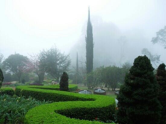 Santo Antonio do Pinhal, SP: Jardim