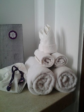 The Purple Mangosteen: bathroom